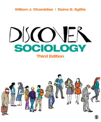 Sociology textbooks in etextbook format vitalsource interactive discover sociology interactive ebook fandeluxe Image collections