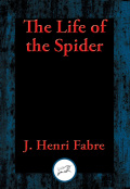 The Life of the Spider 9781515409342