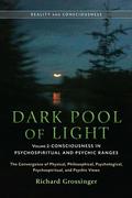 Dark Pool of Light, Volume Two 9781583945087
