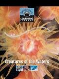 Creatures of Waters 9781593395162