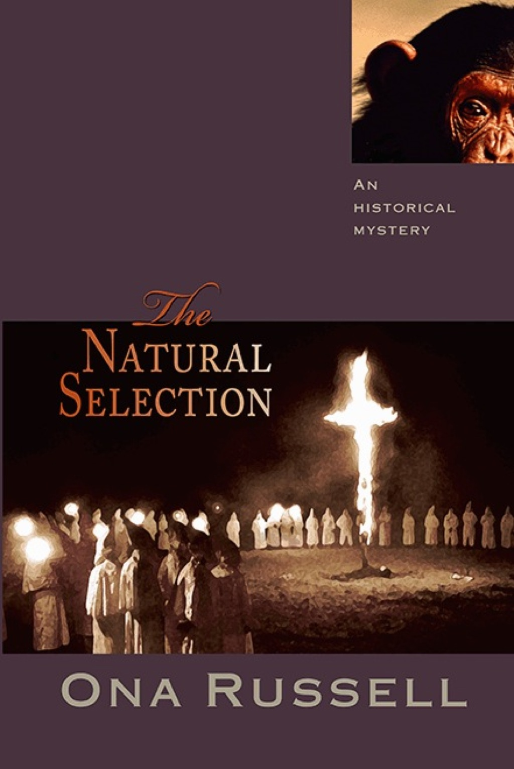The Natural Selection (eBook)