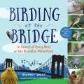 Birding at the Bridge 9781615193141