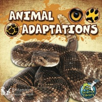 Animal Adaptations              by             Amy S. Hansen