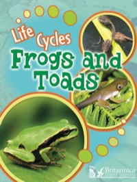 Frogs and Toads              by             Julie Lundgren