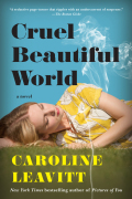 Cruel Beautiful World 9781616206055