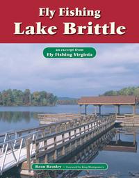 Fly Fishing Lake Brittle              by             Beau Beasley