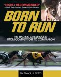 The Born to Run 9781620080528