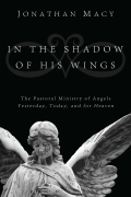 In the Shadow of His Wings 9781621892601