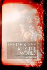 The Process That Is the World              by             Joe Panzner