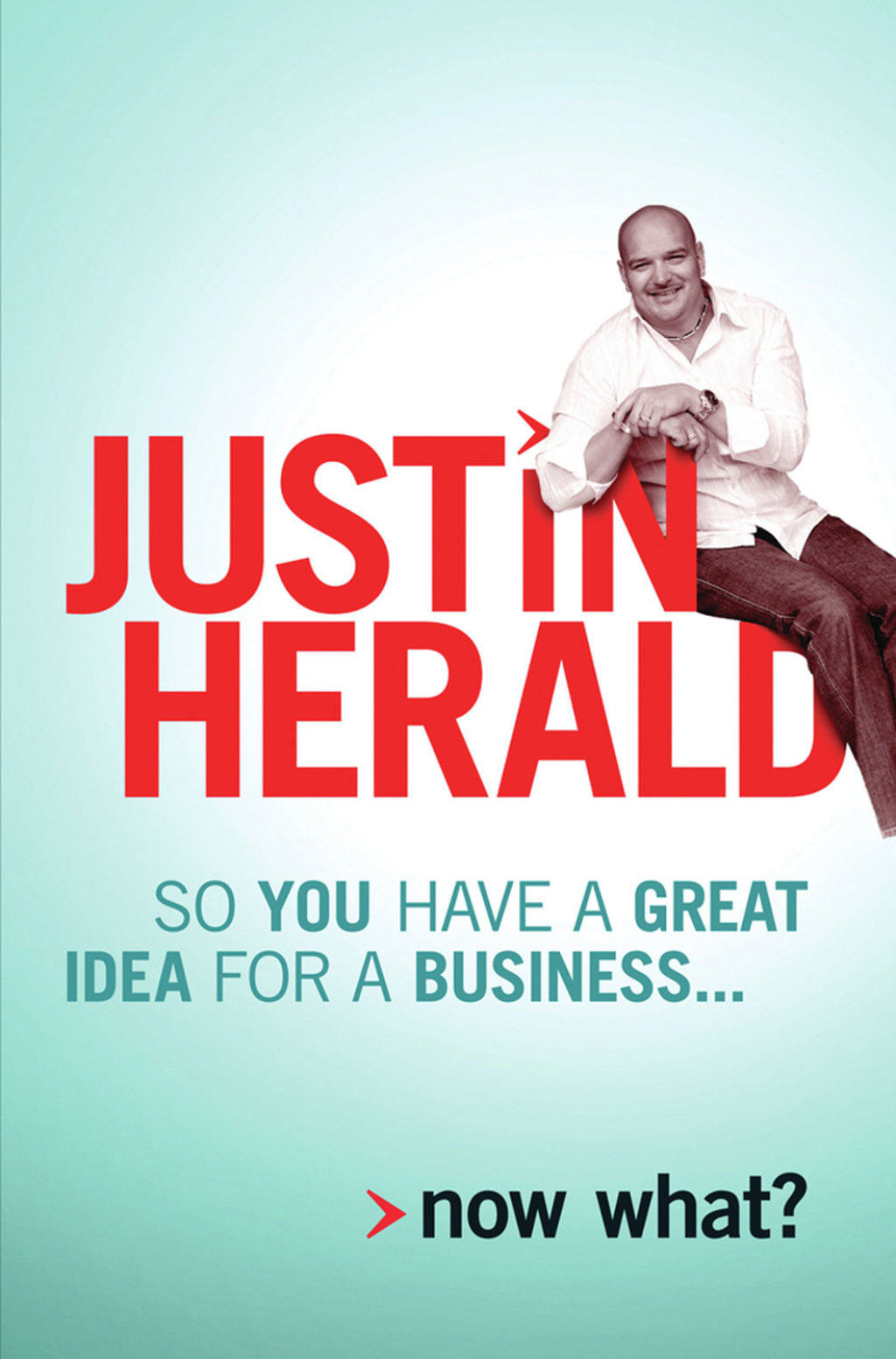 So you have a great idea for a business... (eBook)