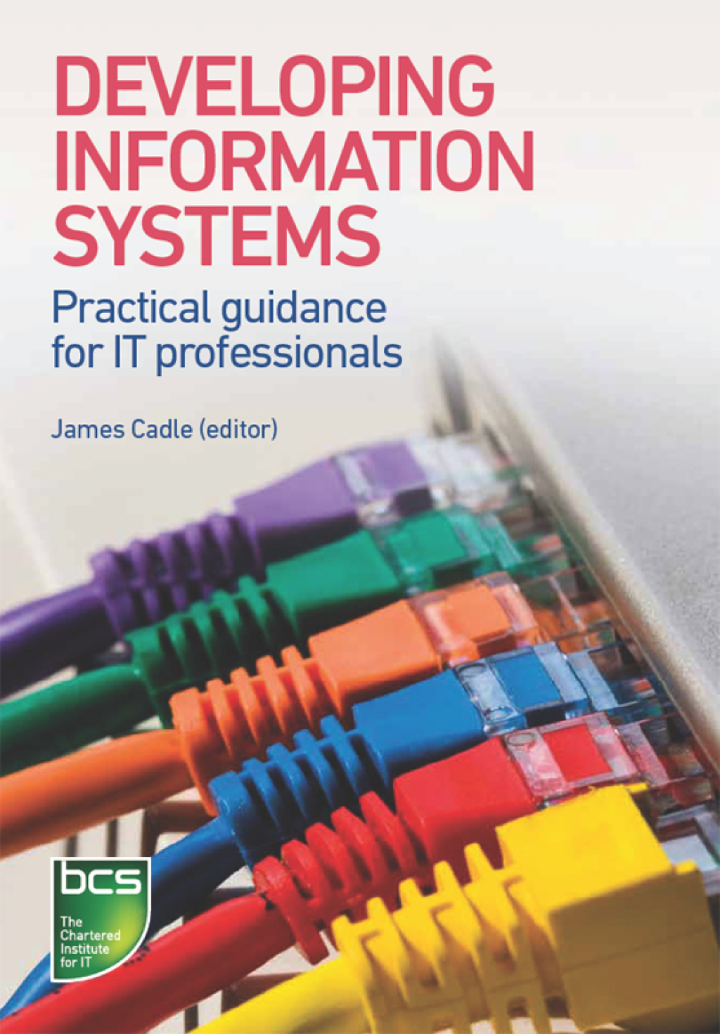 Developing Information Systems (eBook)