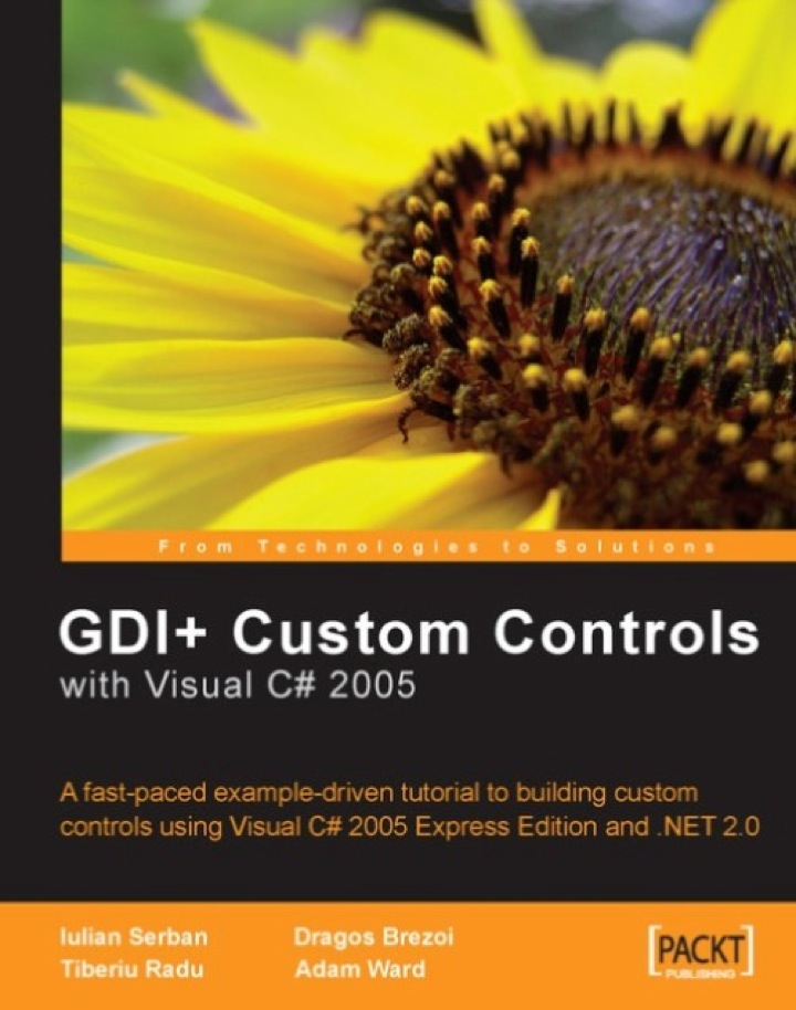 GDI  Application Custom Controls with Visual C# 2005