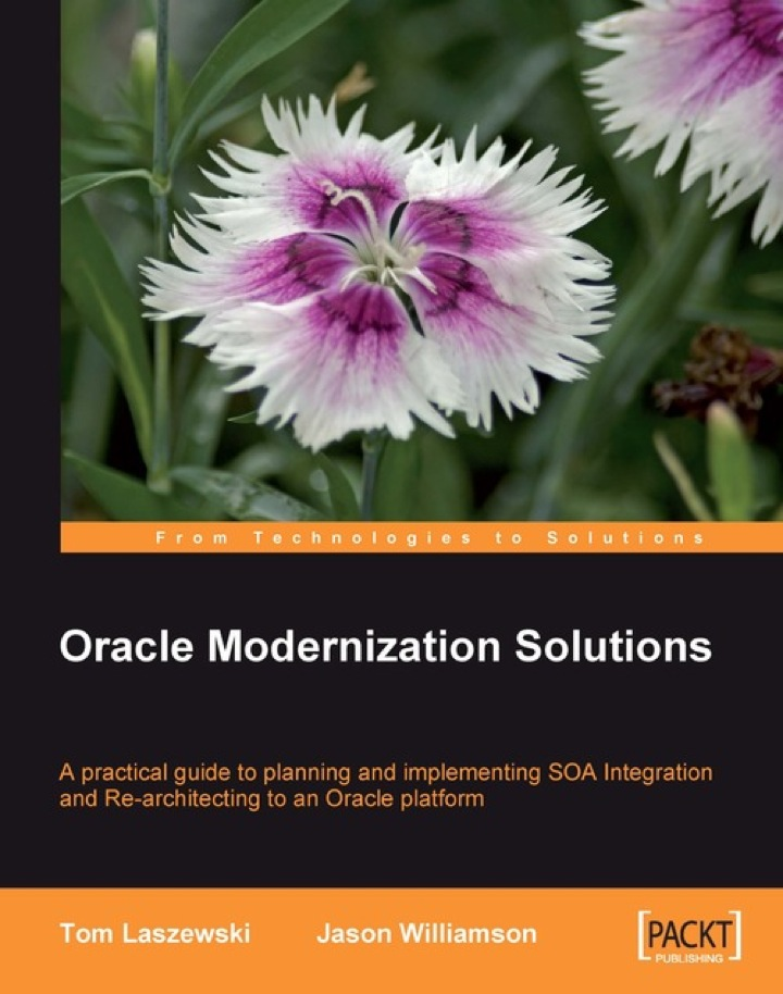 Oracle Modernization Solutions