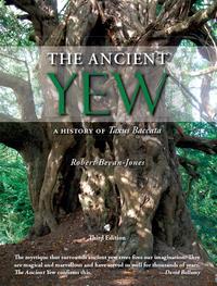 The Ancient Yew              by             Robert Bevan-Jones