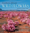 Southern African Wild Flowers - Jewels of the Veld 9781920572662