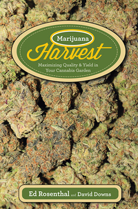Marijuana Harvest              by             Ed Rosenthal