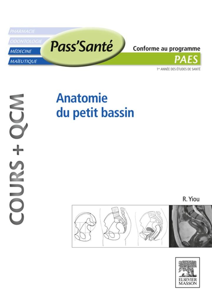 Anatomie du petit bassin (Cours   QCM)