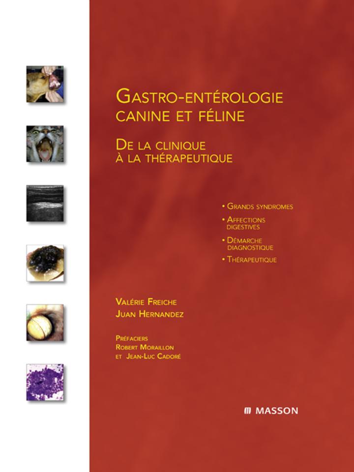 Gastro-entérologie canine et féline