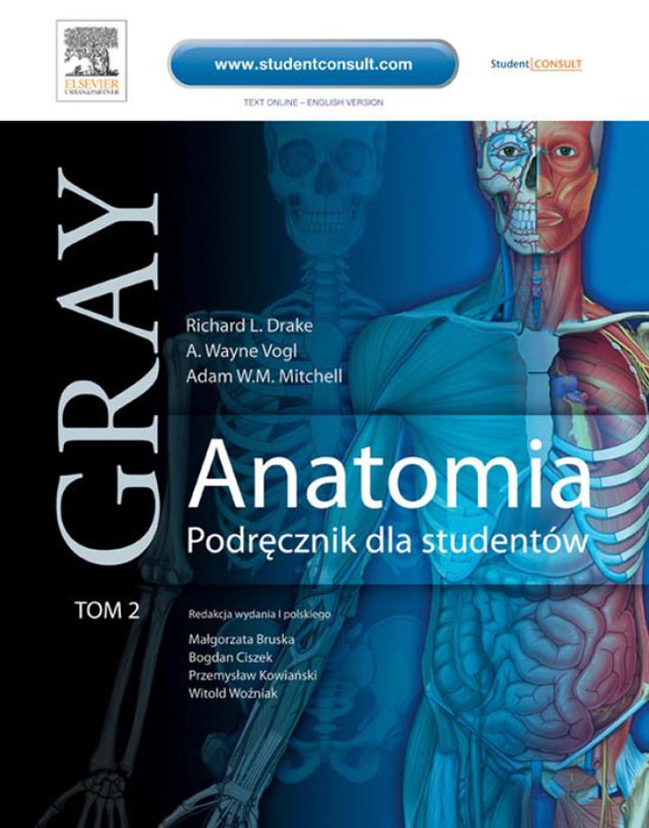 Anatomia. Podręcznik dla studentów. Gray. Tom 2